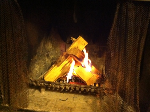 Step 2: Add wood to fire.